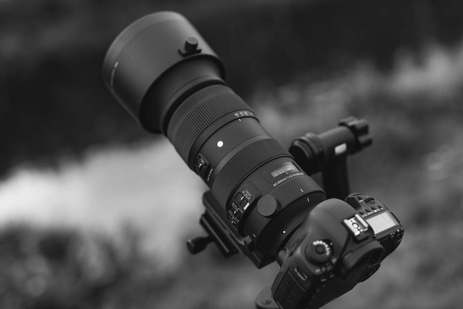 Sigma 60-600mm F4.5-6.3 S DG OS HSM – pierwsze wrażenia